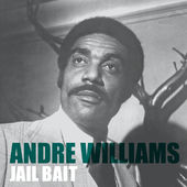 Jail Bait - Single, Andre Williams - cover170x170