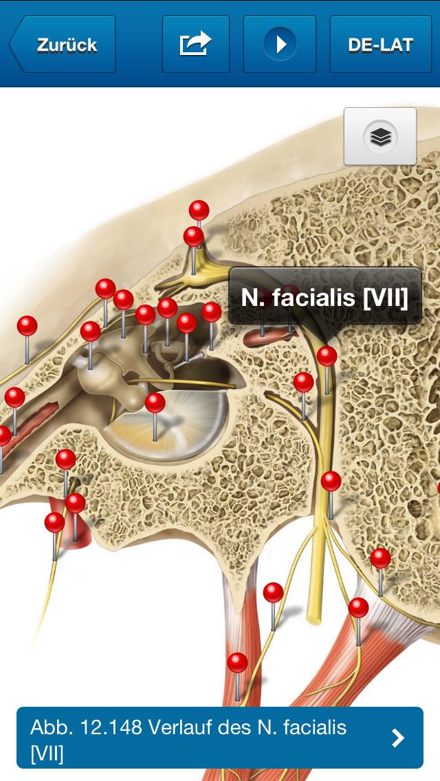 Sobotta Anatomie Atlas Gratis - Elsevier GmbH - App