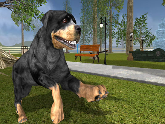 3D Rottweiler Simulator Dog Life on New York Screenshots