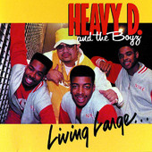 Heavy D & The Boyz