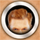 GingerBooth Icon
