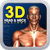 3D Head and Neck Anatomy