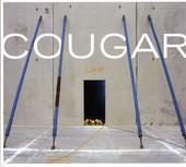 Pulse Conditioner - Cougar