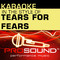 Karaoke - In the Style of Tears for Fears (Professional Performance Tracks)