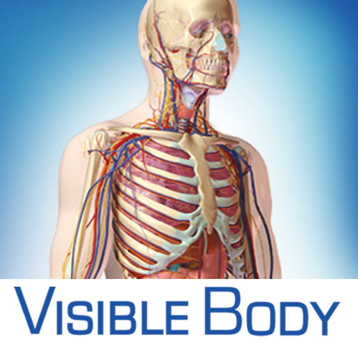 Anatomy & Physiology: An Introduction to Body Structures and ...