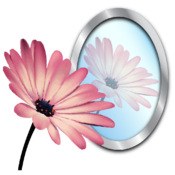 PhotoReflector icon