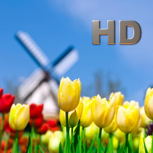 Flowers Collection HD