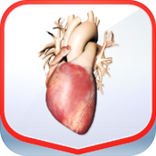 Pocket Heart 2 icon