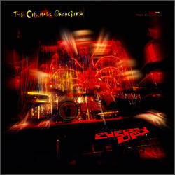 View album The Cinematic Orchestra - Every Day