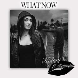 View album Leylani - What Now (feat. Redmelo) - Single