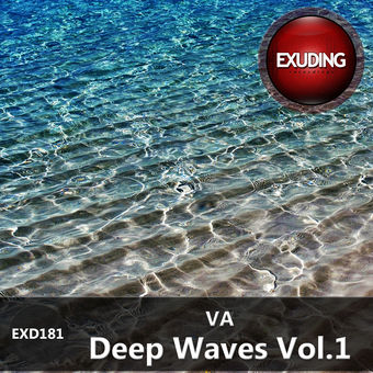 Various Artists – Deep Waves, Vol. 1 [iTunes Plus AAC M4A]