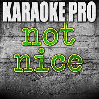 Not Nice (Originally Performed by PARTYNEXTDOOR) [Instrumental Version] – Single – Karaoke Pro