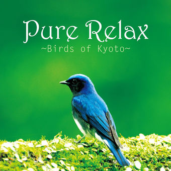 Various Artists – Pure Relax ~Birds of Kyoto~ [iTunes Plus AAC M4A]