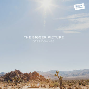The Bigger Picture – Stee Downes