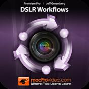 mpvs-premiere-pro-5-dslr-workflows