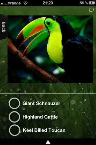 Animal Kingdom for iPhone