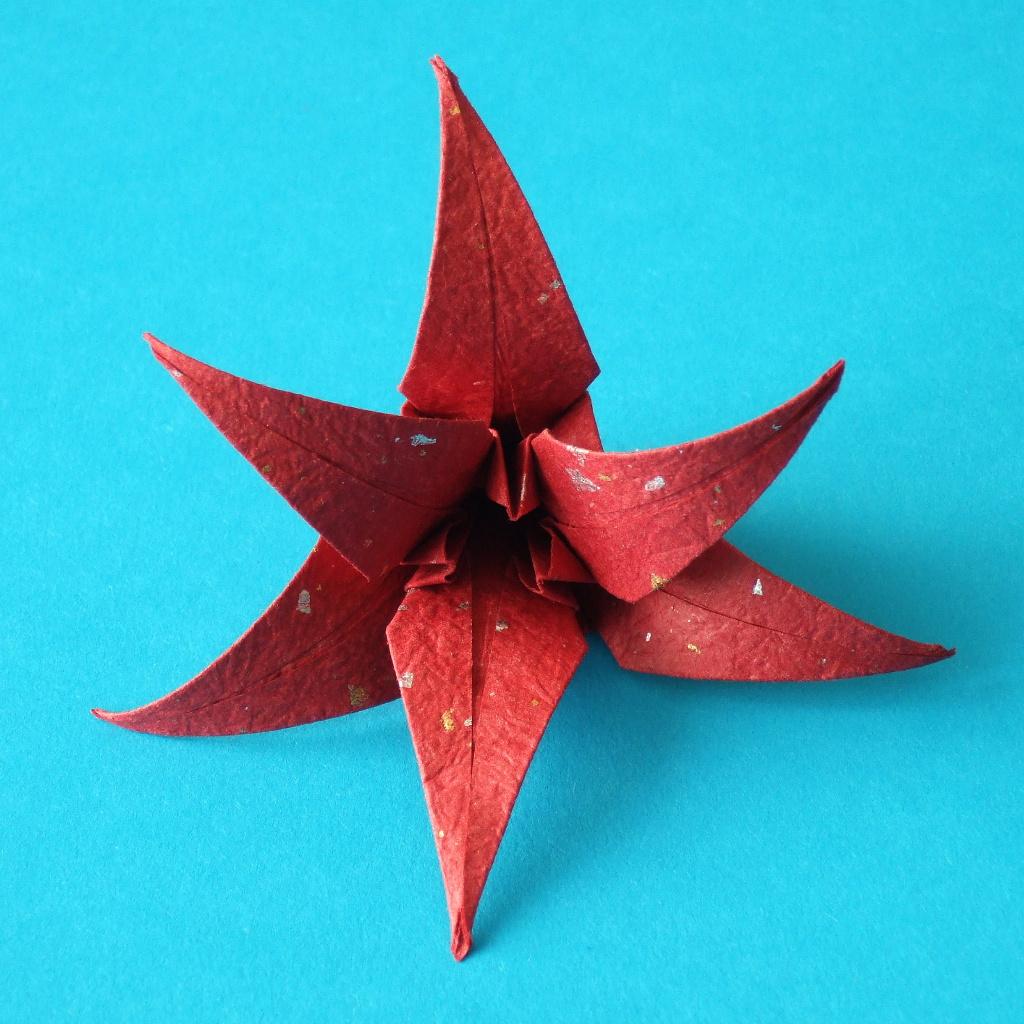 折纸教程下载_origami flowers下载_折纸教程 iphone