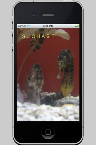 Peka Djur iPhone Screenshot 4
