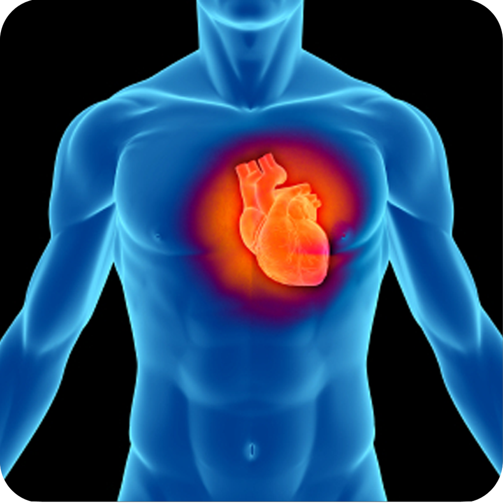 3D Heart Anatomy | iPhone Medical apps | by iMedicSoft