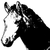 Exemplar Equus for Mac icon