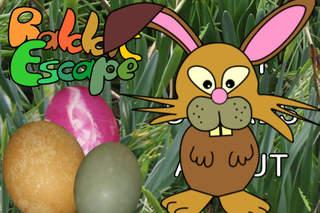 RabbitEscape - maze runner