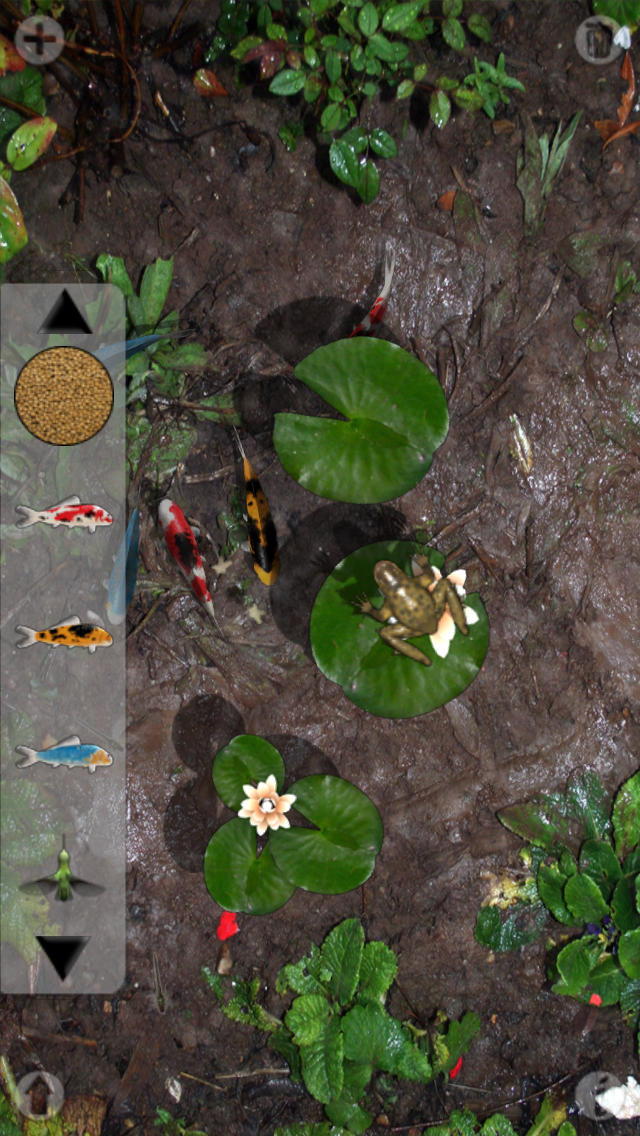 Pocket Pond screenshot 1