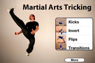 Martial Arts Tricking screenshot