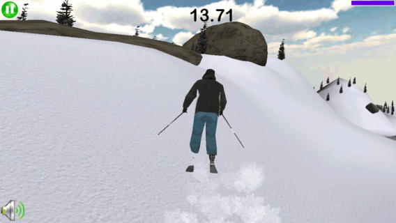 ArcticSki 3D