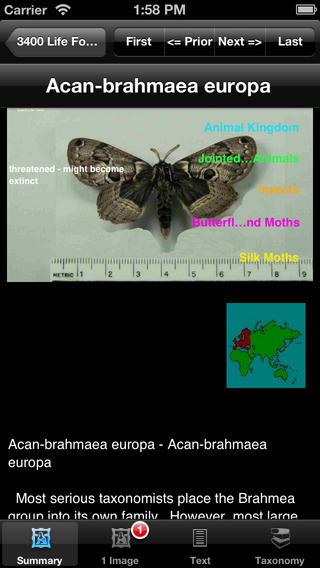 Moths of the New World - eMothsNW iPhone Screenshot 3