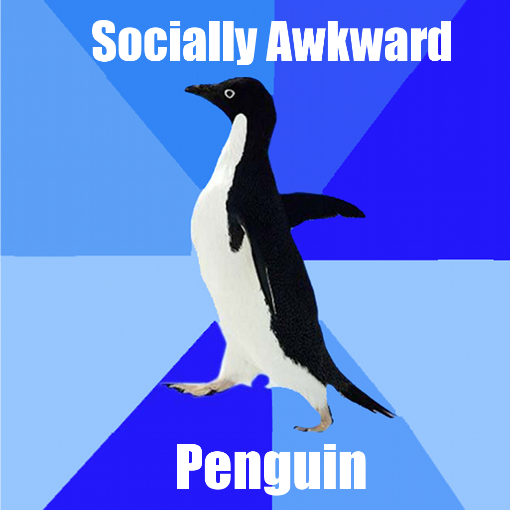 Socially awesome penguin - photo#2