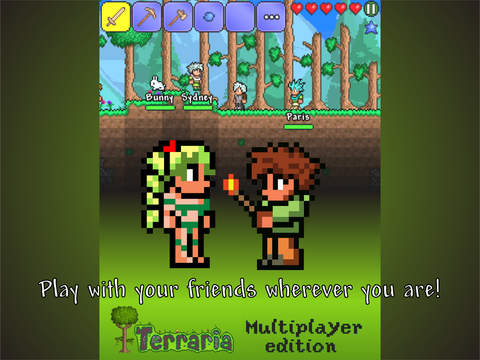 Screenshot 1 Multiplayer Terraria edition