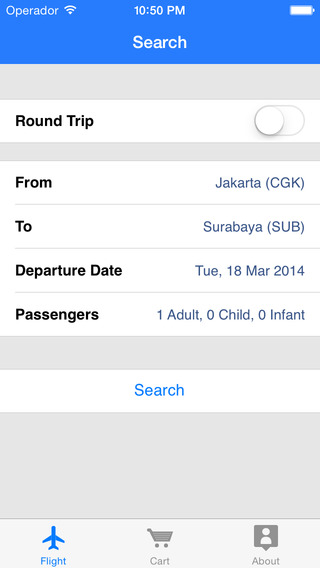 Indonesia Flight - Ticket