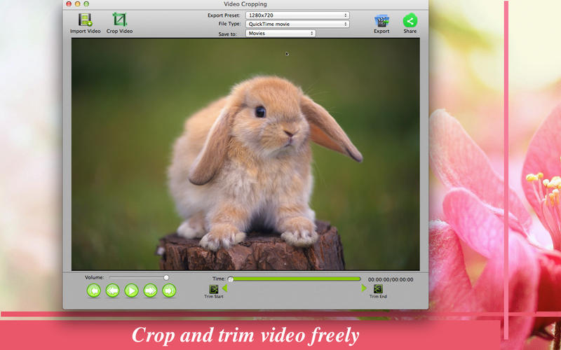 Video Cropping Screenshot - 1