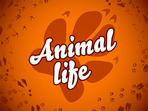 Animal Life for toddlers