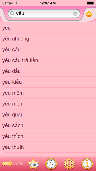 Turkish Vietnamese dictionary
