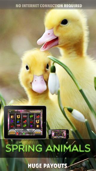 Spring Animals - FREE Slots Game The Nikephoros Way of Wealth