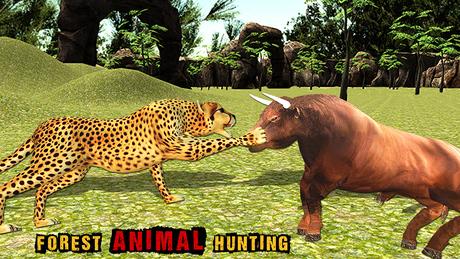 3d森林动物图片