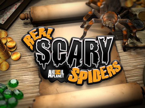 Real Scary Spidersscreeshot 5
