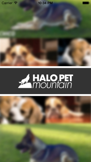 Halo Pet Mountain