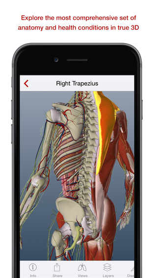 BioDigital Human - Anatomy and Health Conditions in 3D