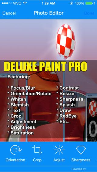 Deluxe Paint Pro