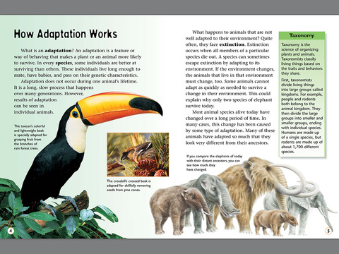 glossary for tropical rainforest book