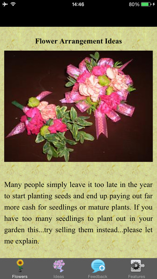 Flower Arrangement Ideas - Home Decor