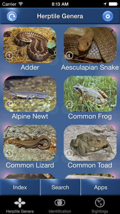 HerptileId - Reptiles and Amphibians of the British Isles iPhone Screenshot 1