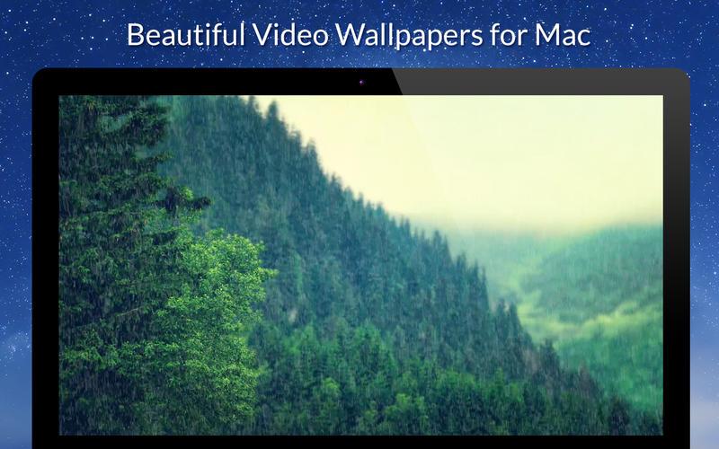 Live VideoWall Lite Screenshot - 2