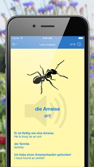 Look Listen Learn German Flashcards