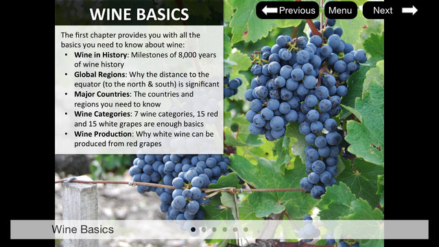 Learn everything about wine in just 1 hour