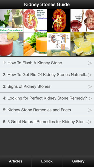Kidney Stones Guide - How To Prevent Treat Kidney Stones Symptoms