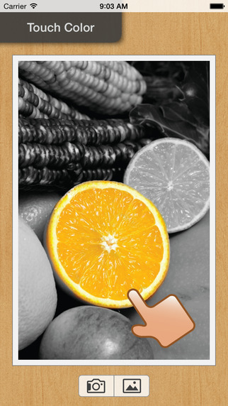 Touch Color - Black and White with Partial Color Effect