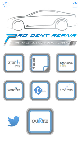 Pro Dent Repair - Paintless Dent Removal